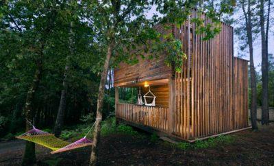 Refugio en el Bosque